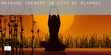 Massage therapy in  City of Plymouth