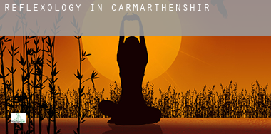 Reflexology in  of Carmarthenshire