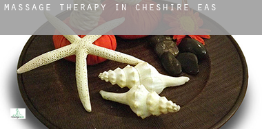 Massage therapy in  Cheshire East