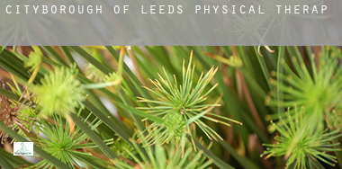 Leeds (City and Borough)  physical therapy