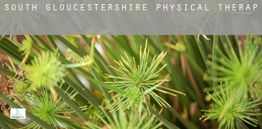 South Gloucestershire  physical therapy